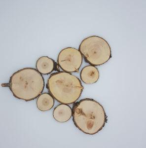 Baumscheiben aus Zirbenholz