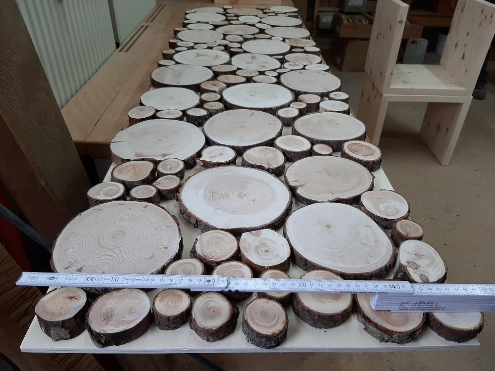 Wandbild Baumscheiben