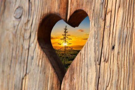 Schreinerei Senega Wir lieben Holz - mehr über uns